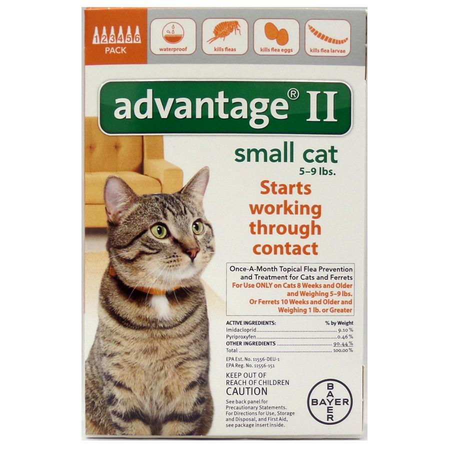 Advantage II 6PK - Orange