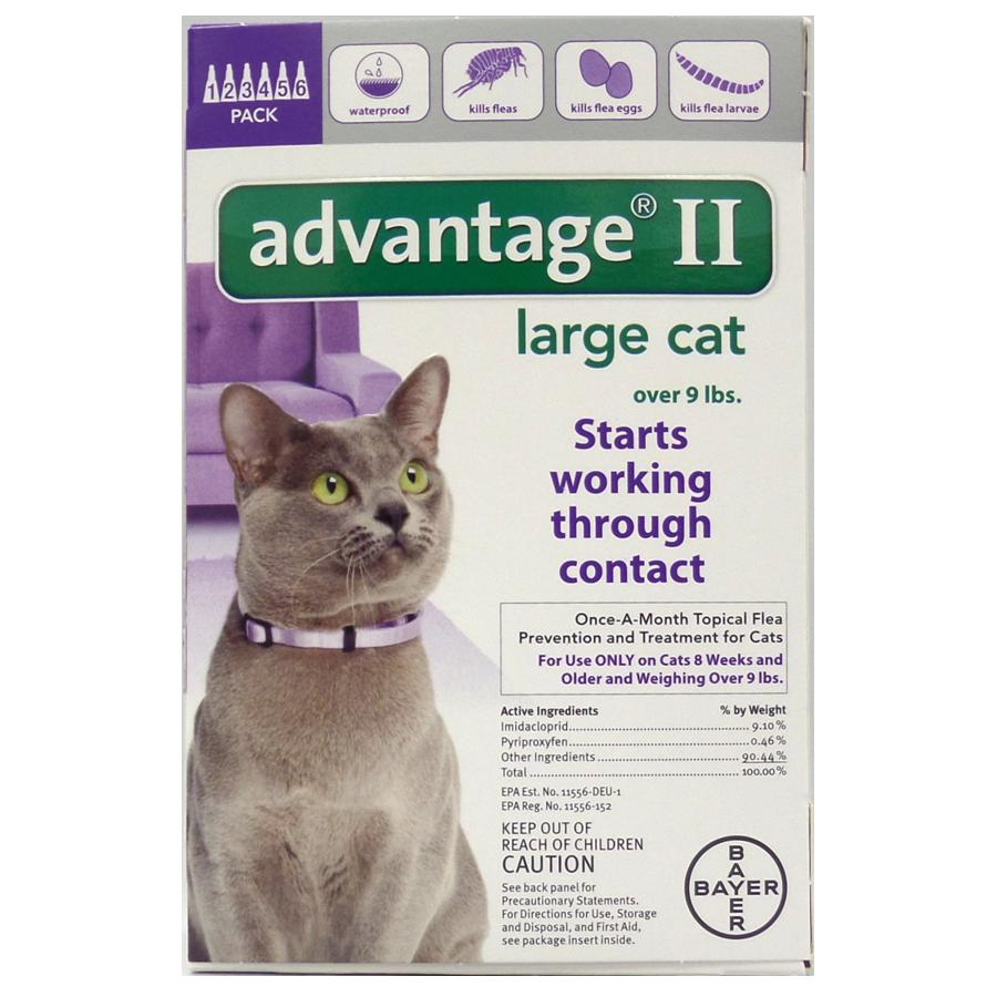 Advantage II 6PK - Purple